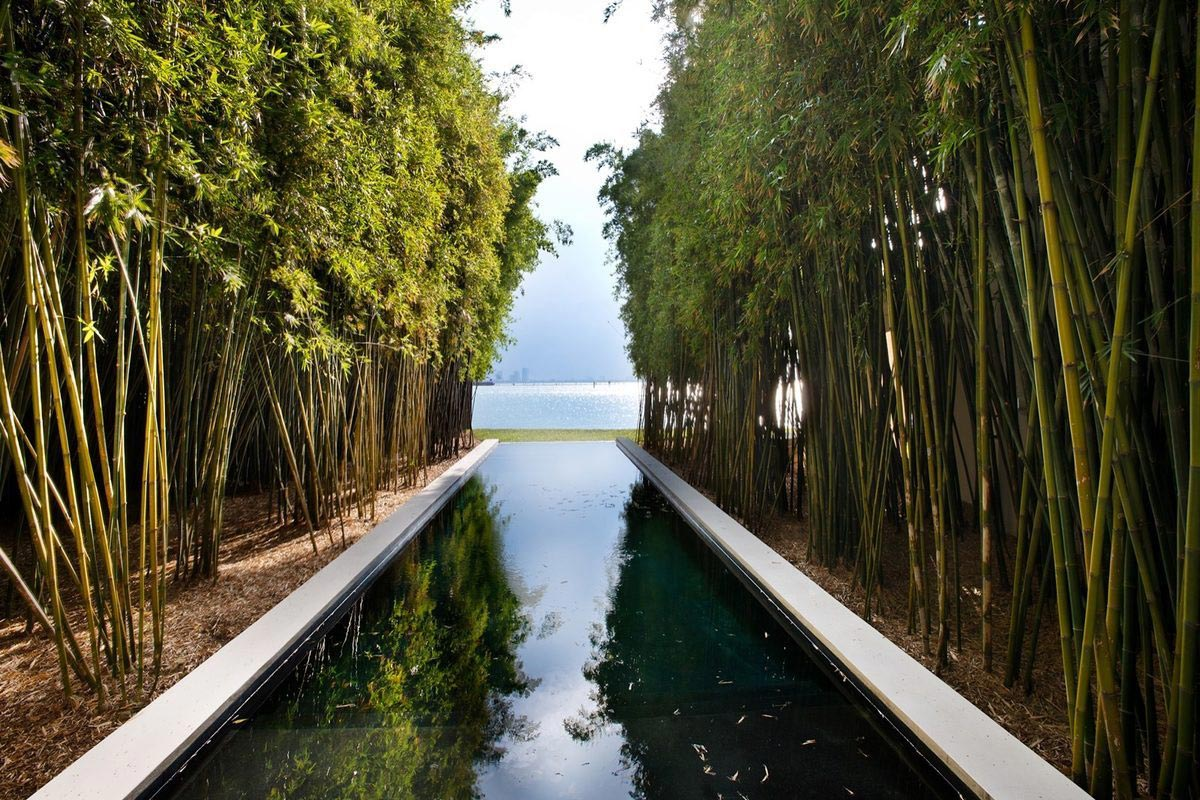 Calvin Klein sells Miami Beach Home 11