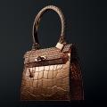 Diamond Kelly: $1.5 Million Bag by Hermes