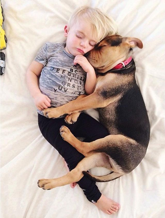 Napping with baby Beau by Jessica Shyba 8