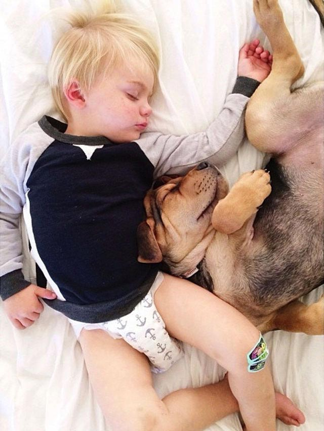 Napping with baby Beau by Jessica Shyba 9