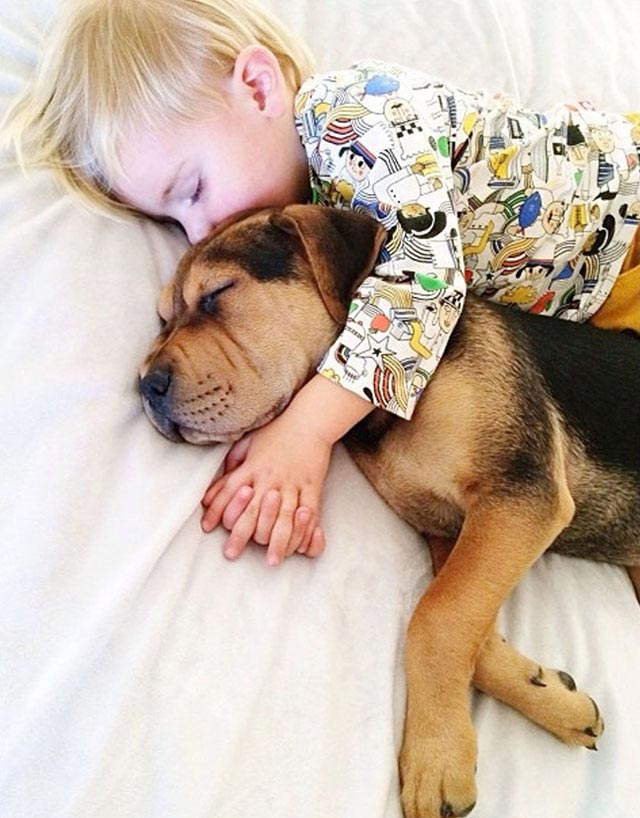 Napping with baby Beau by Jessica Shyba 12