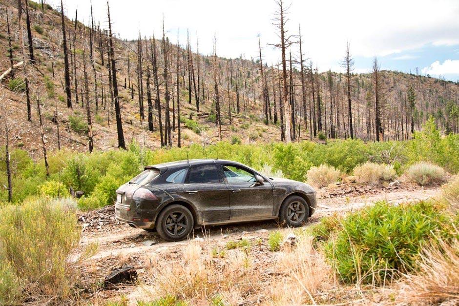 Der brandeue Porsche SUV: Macan 8