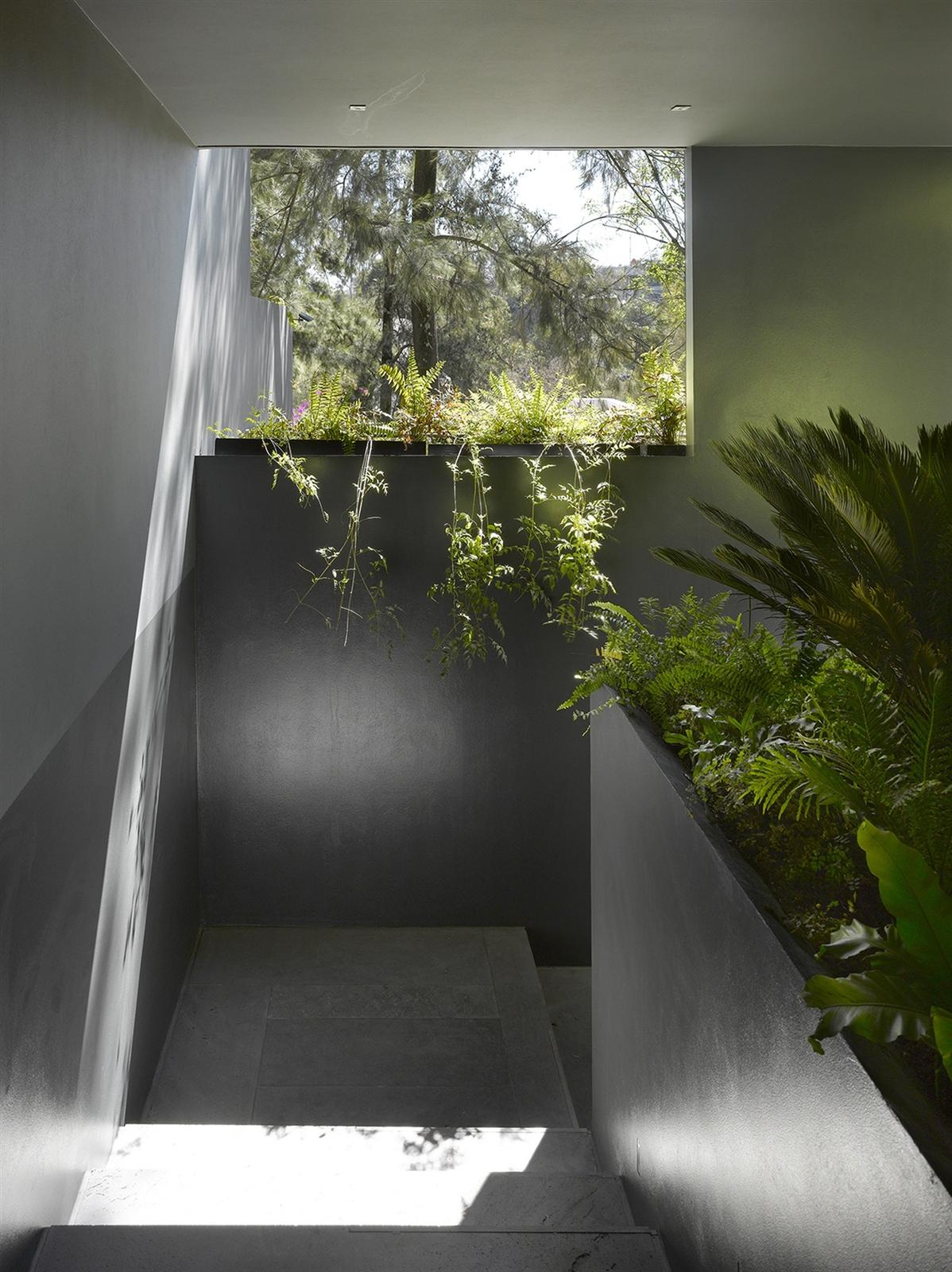 The Barranca House in Mexico City 15