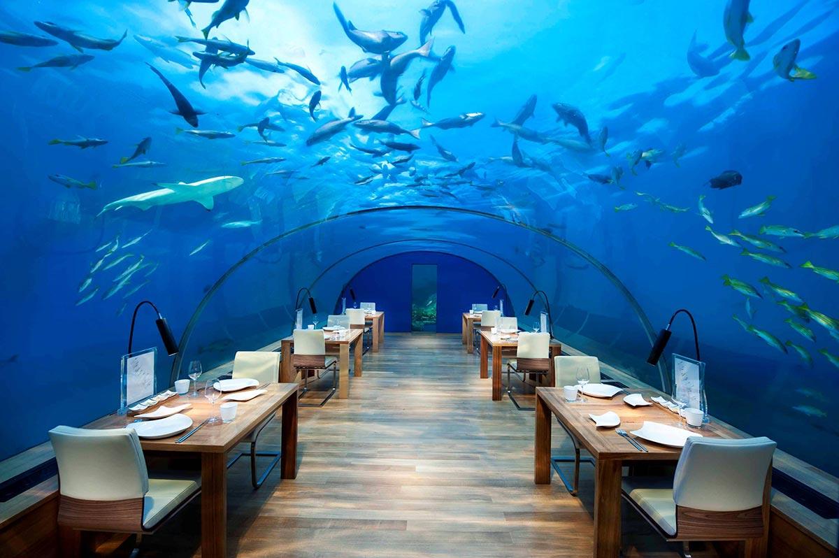 Unterwasser Restaurant x Malediven x Rangali Island 2
