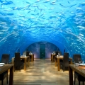 Underwater Restaurant x Maldives x Rangali Island