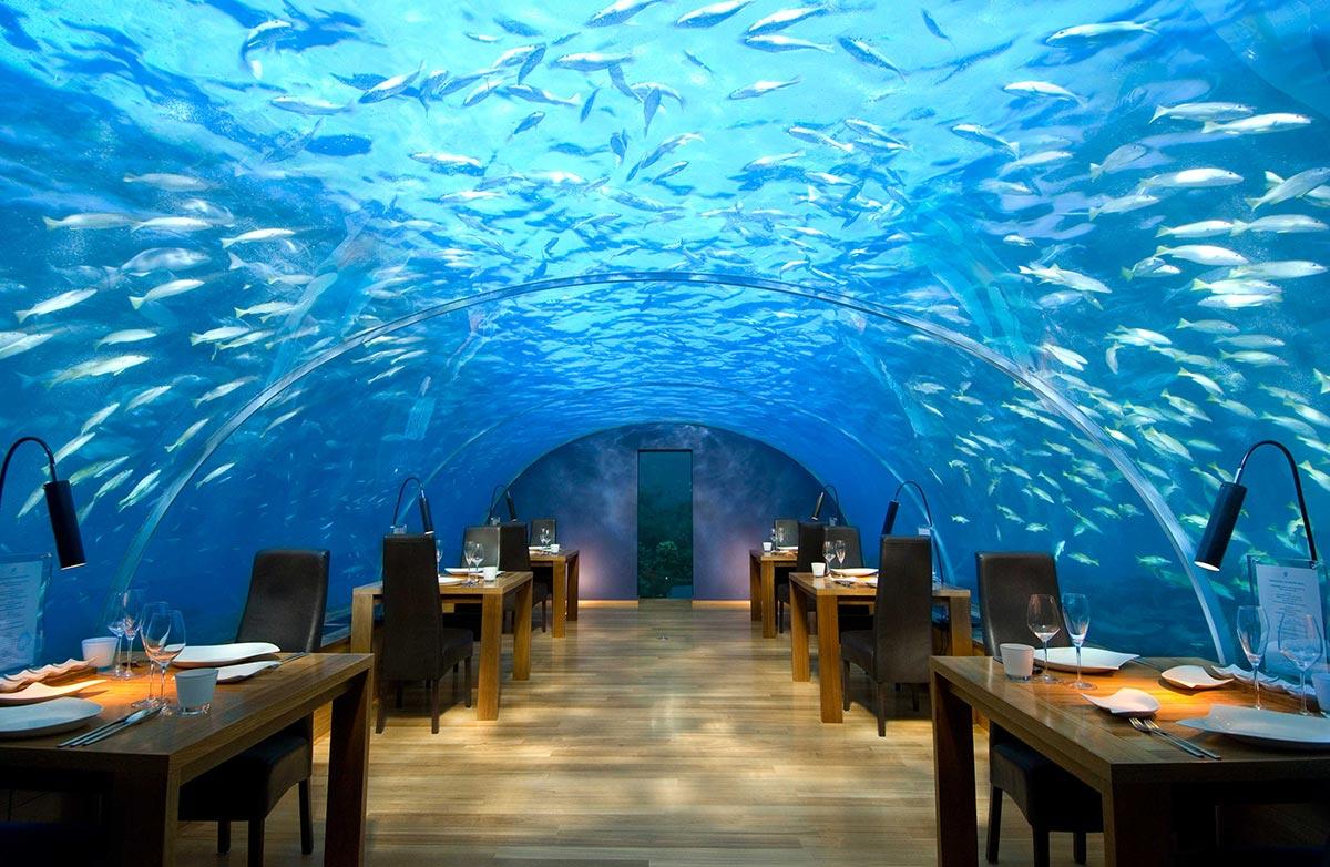 Unterwasser Restaurant x Malediven x Rangali Island 1