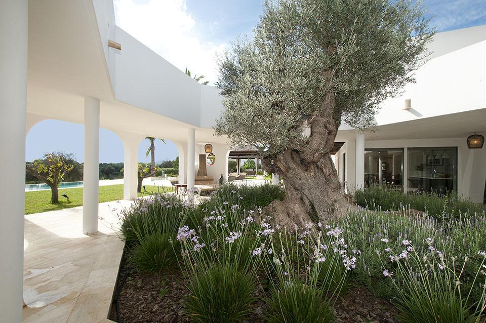 Countryhouse Villa in San Carlos x Ibiza 15