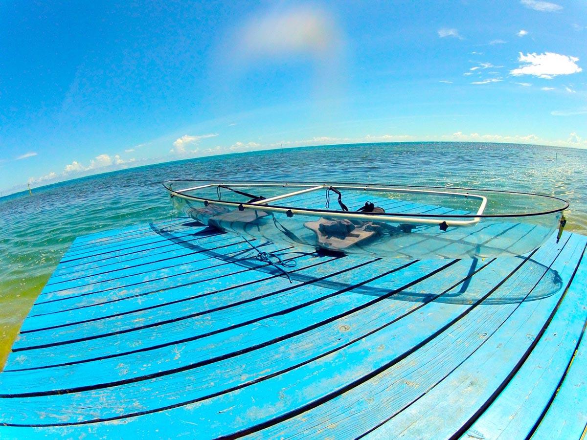Erkunde die Meere mit diesem transparenten Kayak 2