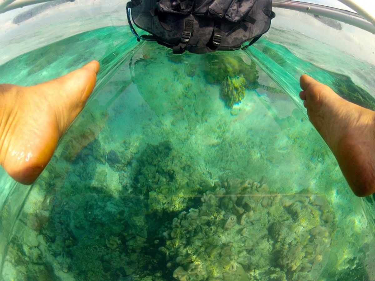 Erkunde die Meere mit diesem transparenten Kayak 4