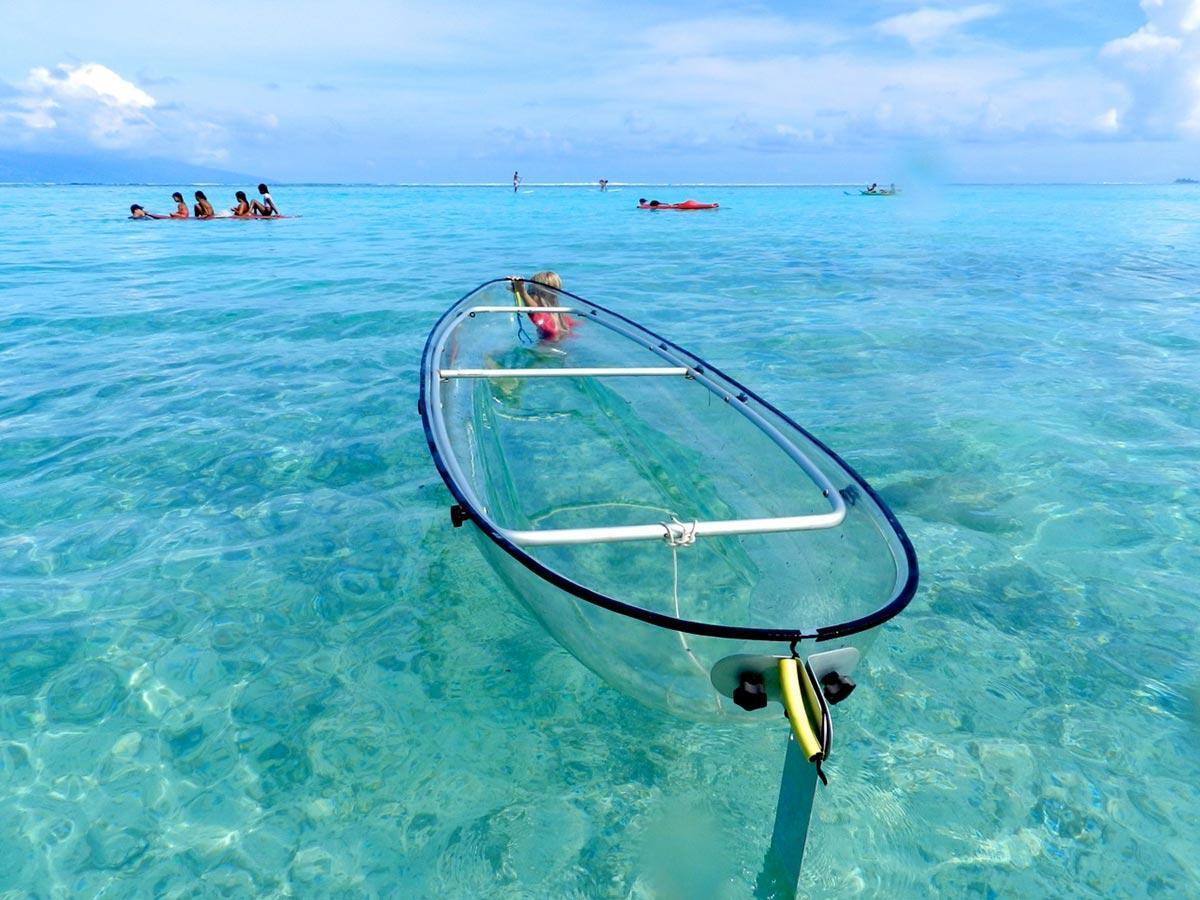 Erkunde die Meere mit diesem transparenten Kayak 1