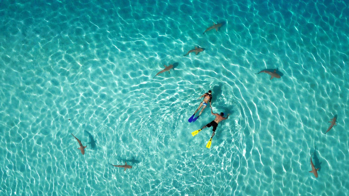 15 of the Most Beautiful Drone Pictures 5
