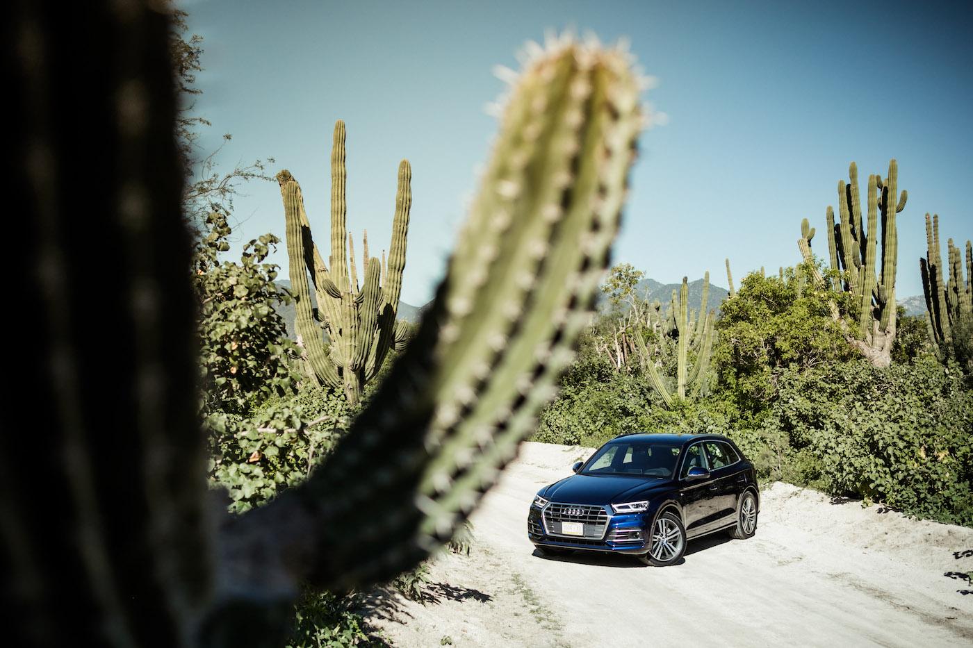 Der neue Audi Q5: Erste Probefahrt unter der mexikanischen Sonne 4