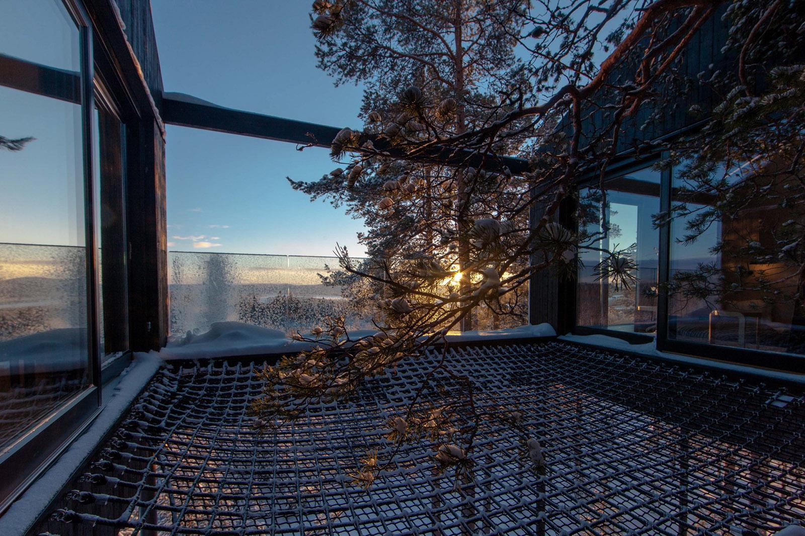 Träumen in Bäumen im 7th Room Treehotel 6