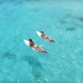 Discover Paradise With The KALOEA Surfer Girls