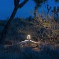 mr.GO!: Die tragbare LED-Laterne für unterwegs