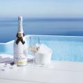Alles, was Du über Champagner wissen musst