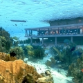 Das Amber Resort auf Zanzibar mit Unterwasser-Restaurant