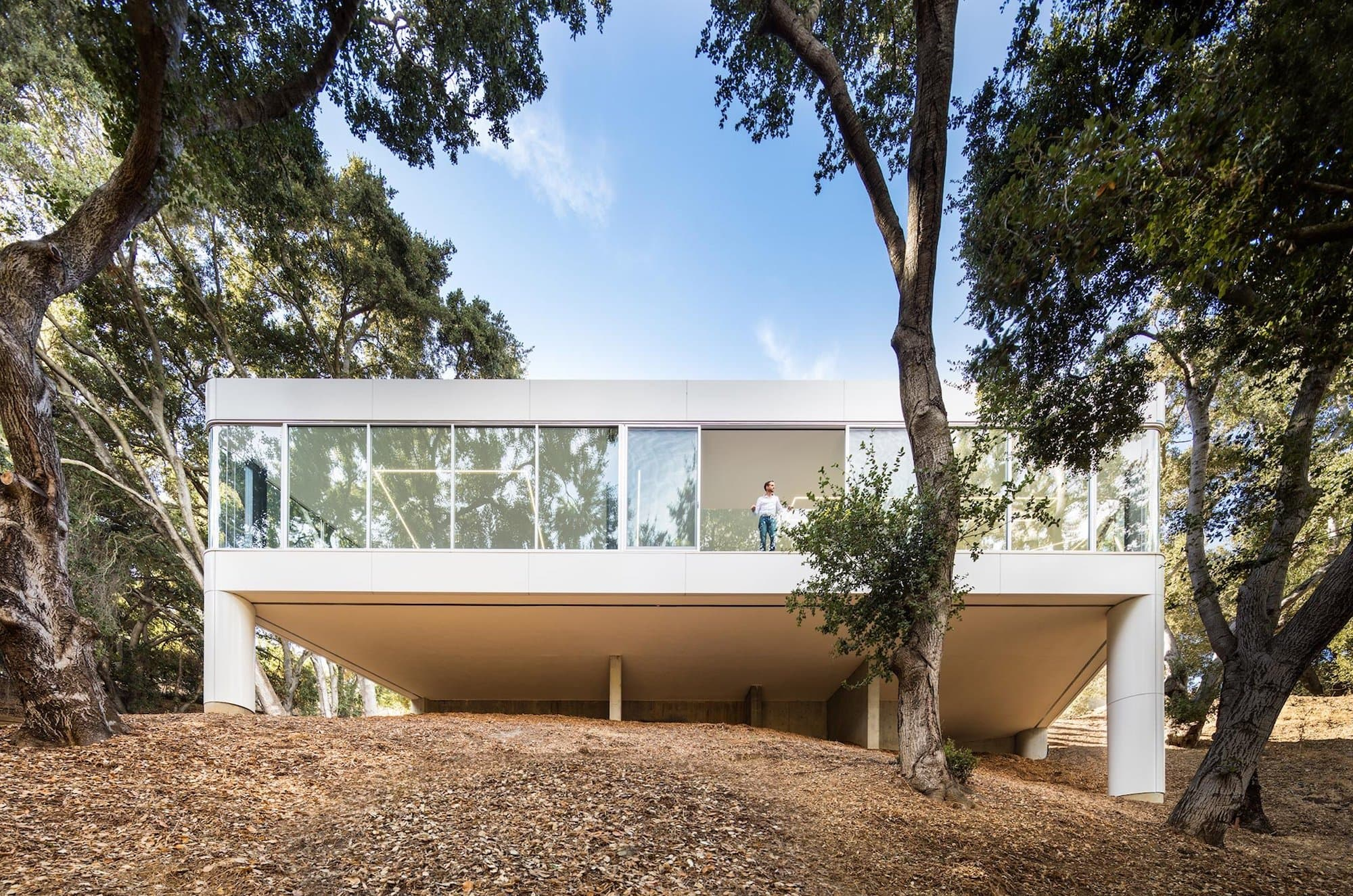 Licht ist Leben: Pam & Paul's House by Craig Steely Architecture 2