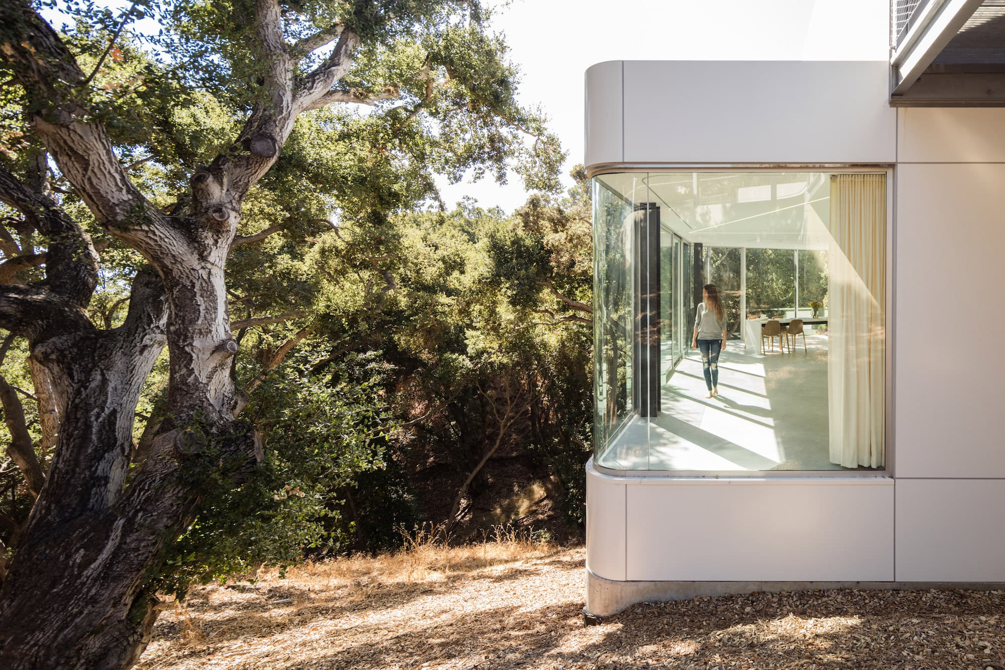 Licht ist Leben: Pam & Paul's House by Craig Steely Architecture 10