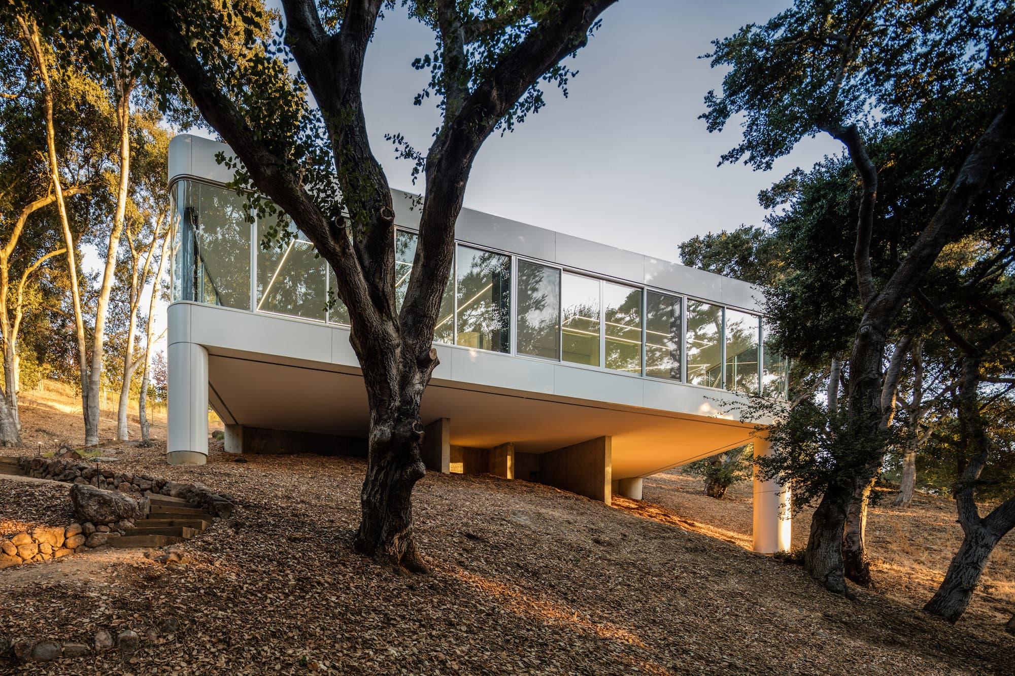 Licht ist Leben: Pam & Paul's House by Craig Steely Architecture 11