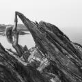 12 Natural Wonders in Norwegen von Paul Giggle