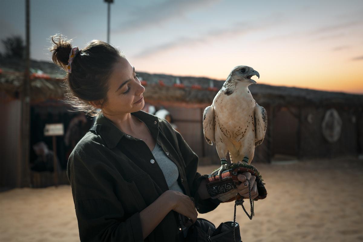 Falcon Lens Award: Das Finale des größten Video-Wettbewerbes der Welt in Abu Dhabi 12