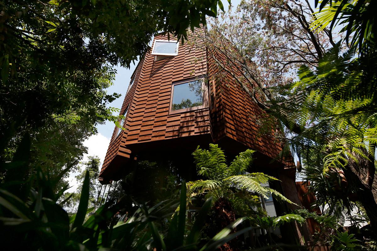 Ein Baumhaus im Dschungel von Tokio 1