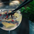 Good News: Gin & Tonic Helps to Avert Mosquitoes