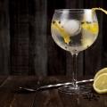 Gesundheit: Gin Tonic soll gegen Heuschnupfen helfen