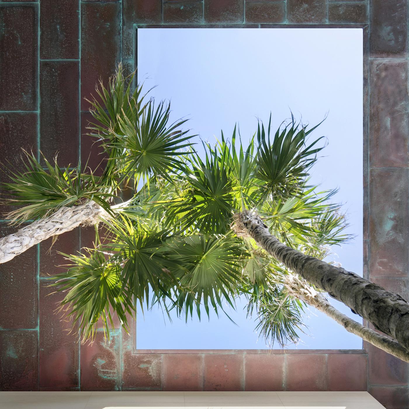 Großzügig, offen und grün: Die Dilido Island Villa von SAOTA in Miami 11