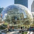 The Spheres: Amazon baut einen eigenen Amazonas für seine Mitarbeiter