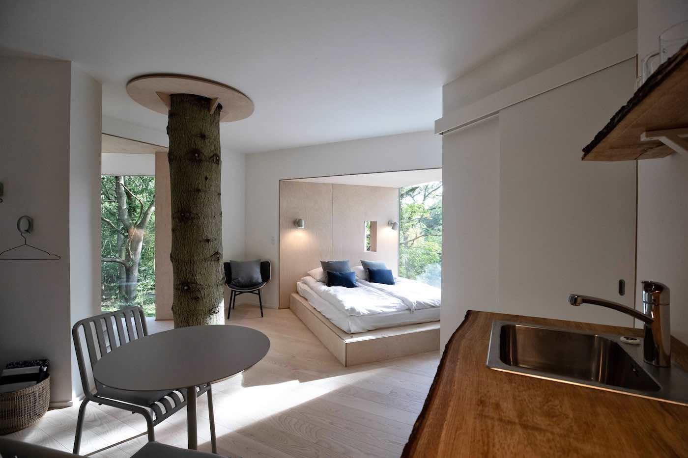 Ein Kindheitstraum: Das Baumhaus mitten im Nirgendwo