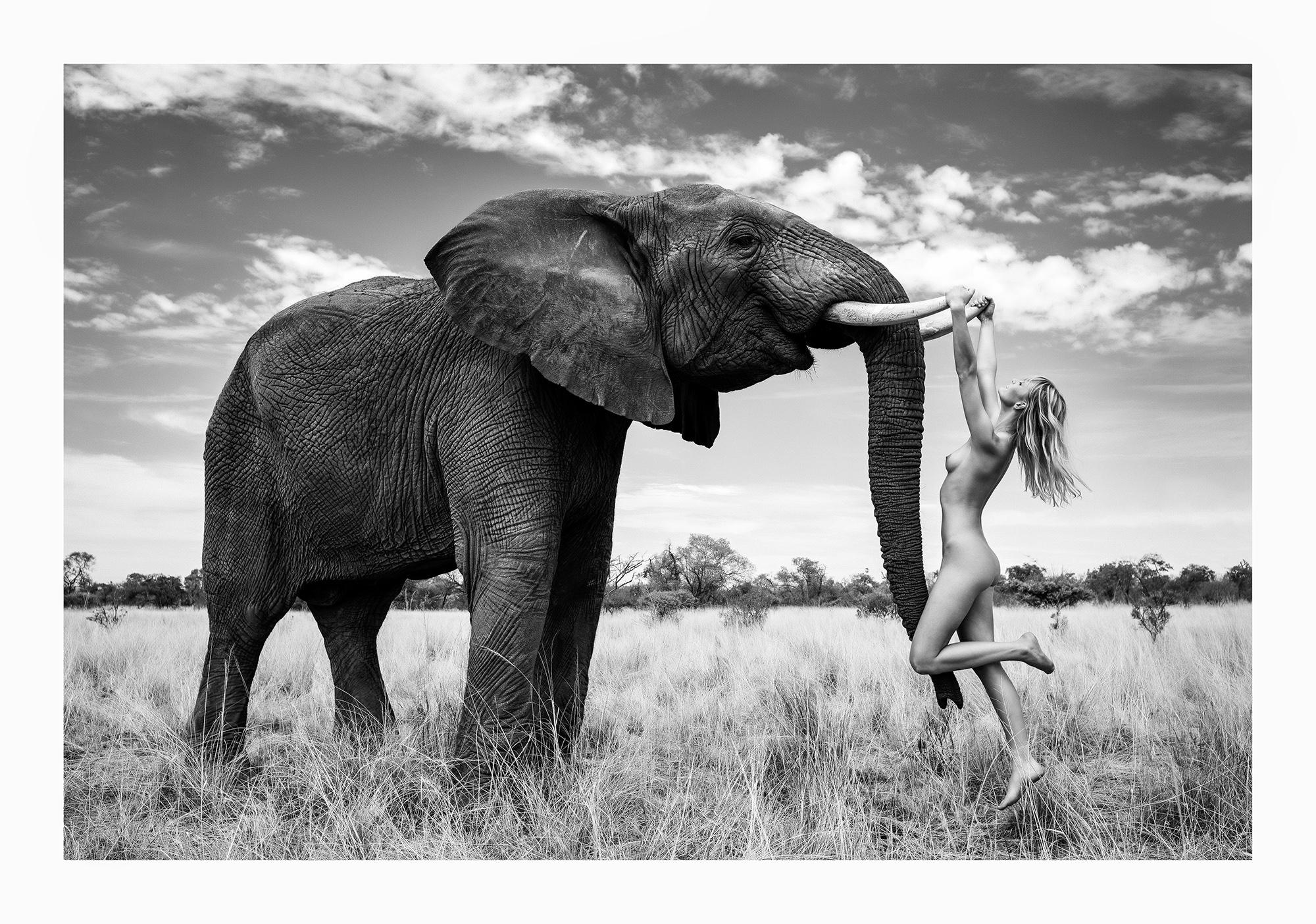 12 Natural Wonders in Afrika von Paul Giggle 1