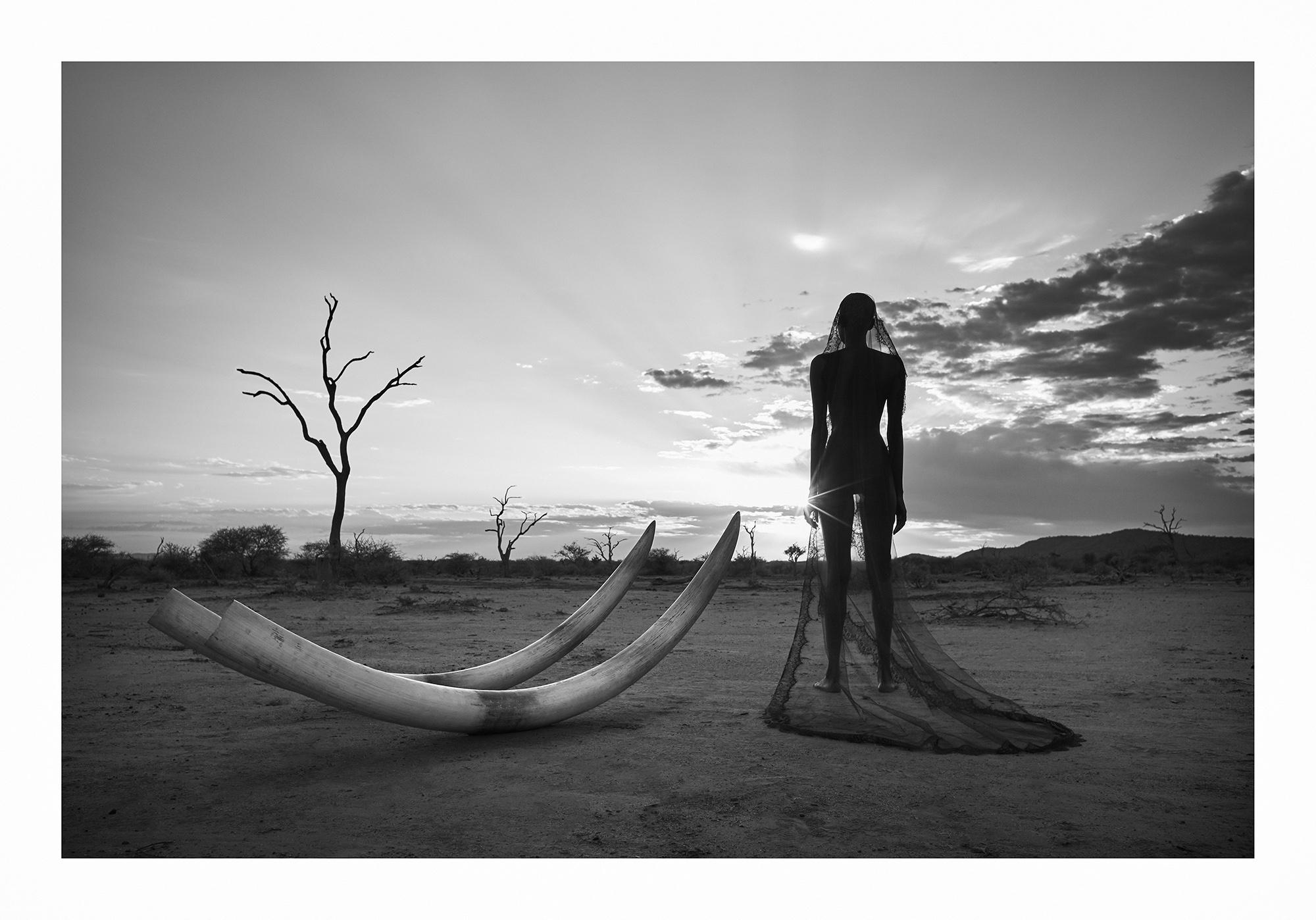 12 Natural Wonders in Afrika von Paul Giggle 6