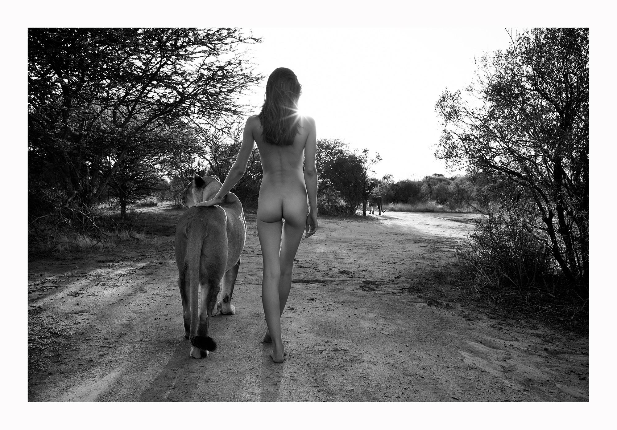12 Natural Wonders in Afrika von Paul Giggle 4