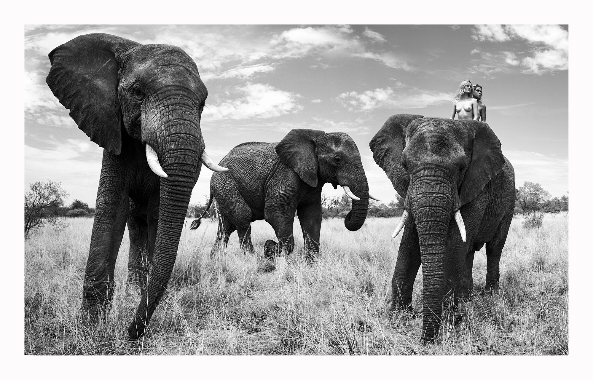 12 Natural Wonders in Afrika von Paul Giggle 3